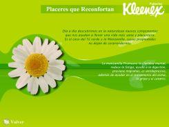 kleenex-2005-6